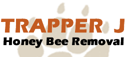 Trapper J Honey Bee Removal